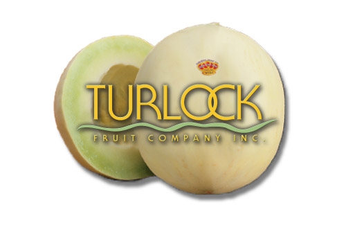 turlock fruit company inc