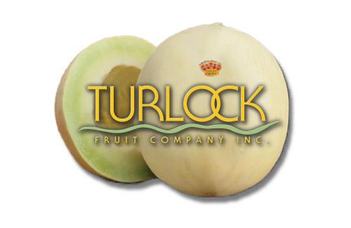 turlock fruit company inc