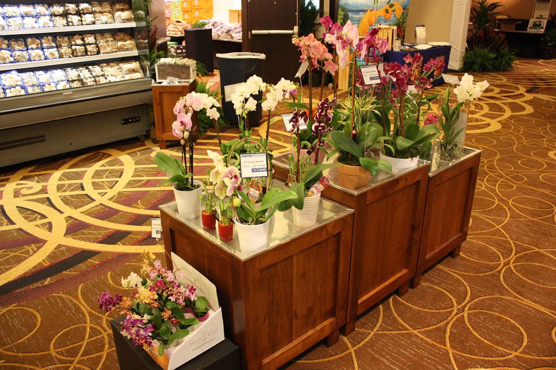 display-flowers.jpg